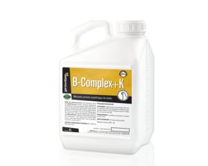 Bcomplexk-1