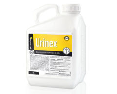 urinex